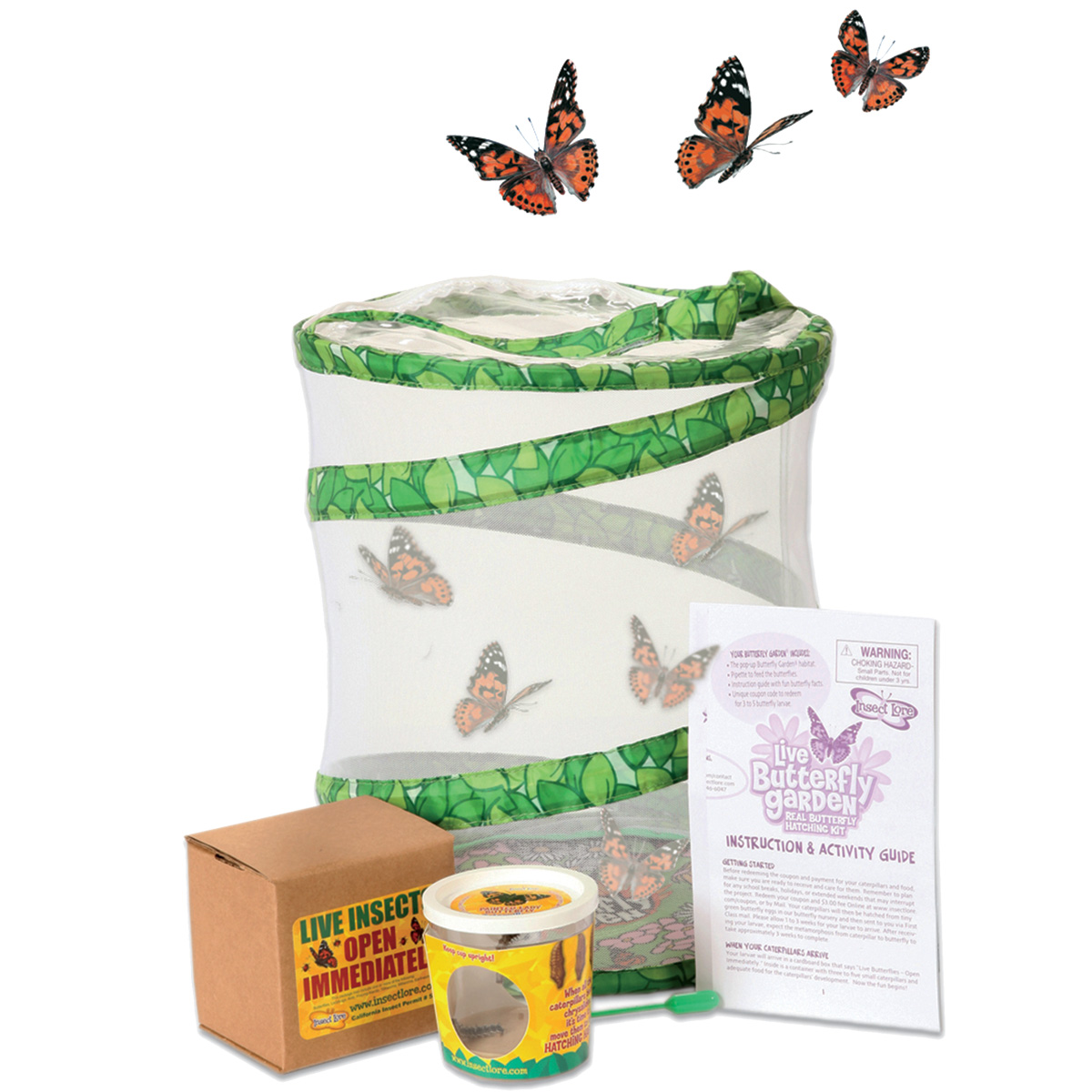 Live Butterfly Garden Kit Exploring Nature Mulberry Bush