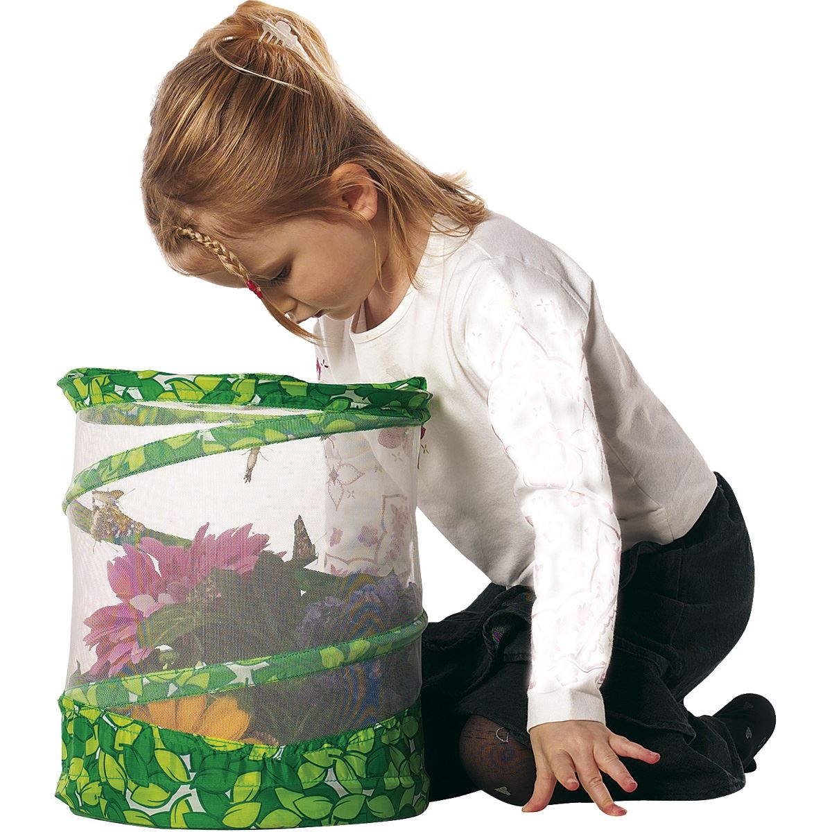 Live Butterfly Garden Kit Explore Nature With A
